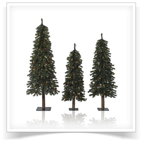 Set of 3 Prelit Alpine Grove Trees with Clear Lights by Treetopia