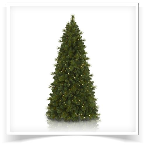 7′ Prelit Foxtail Pine Artificial Christmas Tree with Clear Lights by Treetopia